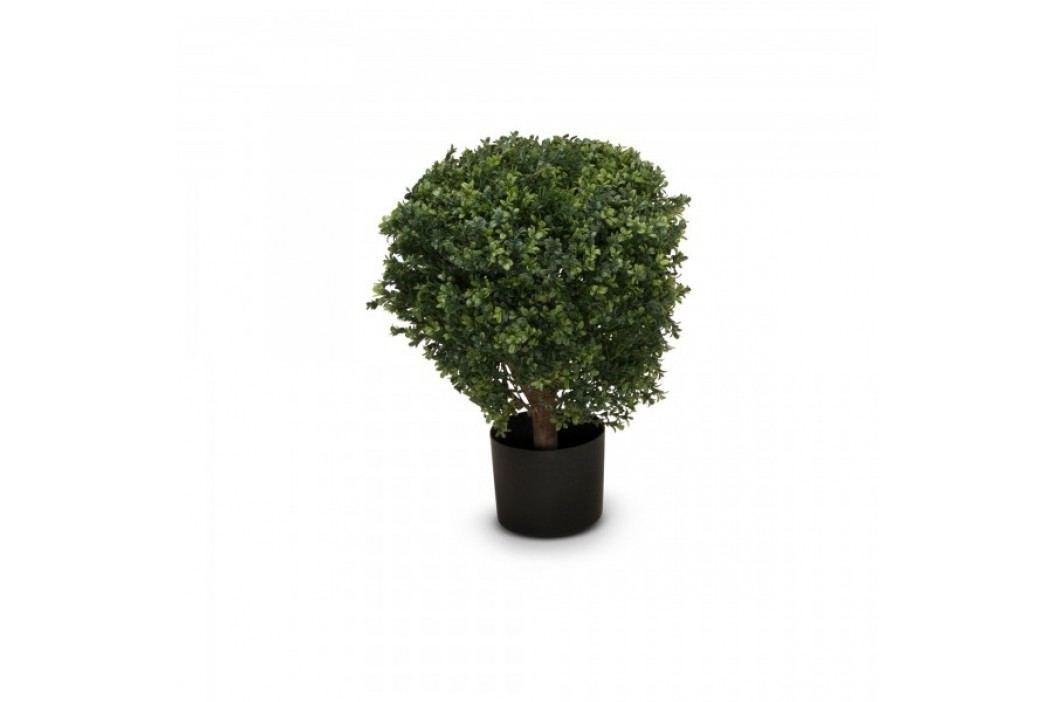 Buchsbaum Kunstpflanze LEON 60, Kunstbaum, Buxbaum, 60 cm Kunstpflanzen