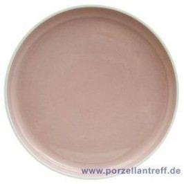 Arzberg Profi Powder Dinner Plate 27 cm
