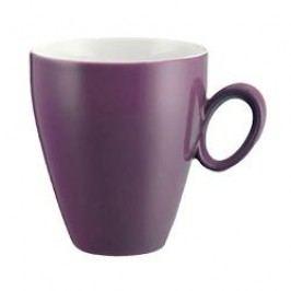 Seltmann Weiden Trio Lavender Mug with Handle 0.30 L