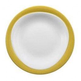 Seltmann Weiden Trio Lemons Yellow Breakfast Plate 23 cm