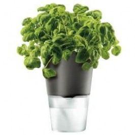 Eva Solo Living Herb pot selfwatering dark grey 11 cm