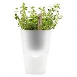 Eva Solo Living Herb pot selfwatering frosted glas 11 cm