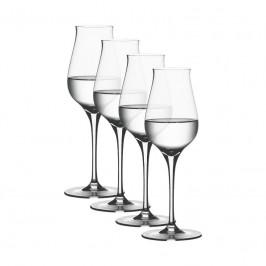 Spiegelau Gläser Authentis Digestif Glas 170 ml Set 4-tlg.