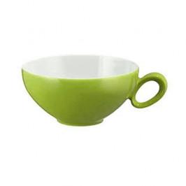 Seltmann Weiden Trio Apfelgrün Tee Obertasse 0,14 L