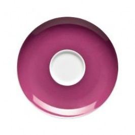Thomas Sunny Day Purple Coffee / tea / kombi cup saucer 14.5 cm