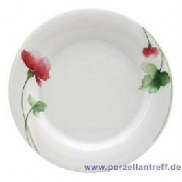 Seltmann Weiden Orlando Livorno Breakfast Plate 21 cm