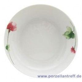 Seltmann Weiden Orlando Livorno Salad Bowl 16 cm