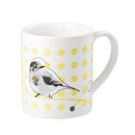 Hutschenreuther 200 Jahre Green Garden Mug with handle 'Robin redbreast' 0.25 L
