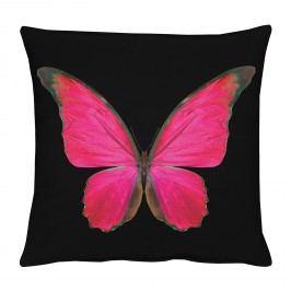 Kissenhülle Schmetterling - Schwarz / Rot, Apelt