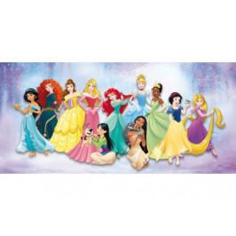 Keilrahmenbild Disney ca. 33x70cm  Prinzessin