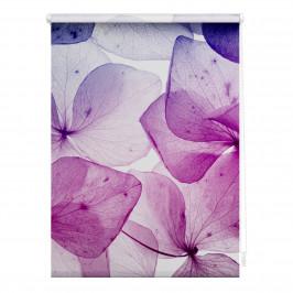 Tageslicht-Rollo Blossom (45x150)