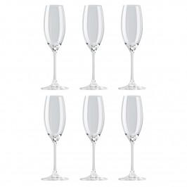 DiVino Champagnerglas 19cl 6er Pack Klar