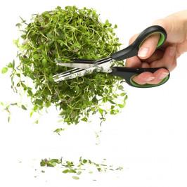 Herb Kräuterschere grün