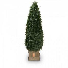 Buchsbaum Kunstpflanze ROBIN 90 aus Kunststoff, Kunstbaum, Buxbaum, Höhe: 90 cm