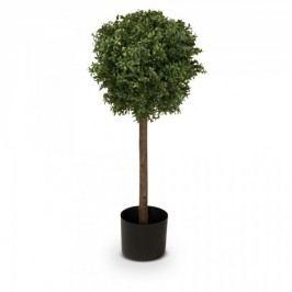 Buchsbaum Kunstpflanze FINN 90 aus Kunststoff, Kunstbaum, Buxbaum, Höhe: 90 cm