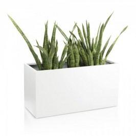 Pflanztrog Visio 50 Fiberglas Blumentrog Pflanzkübel Pflanzbehälter, Maße: 100x40x50 cm (L/B/H), Farbe: weiß
