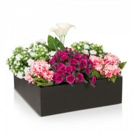 Pflanzschale Pila 20 L Fiberglas Blumenkübel Pflanzkübel Blumenschale Maße: 60x60x20 cm (L/B/H), Farbe: schwarz