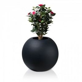 Großer Pflanzkübel COLOS 67 Fiberglas Pflanztopf Blumenkübel Pflanztopf, Maße: 77x77x67 cm (L/B/H), Farbe: schwarz