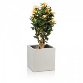 Fiberglas Pflanzkübel Cubo 40 Pflanztopf Blumenkübel Pflanzbehälter, Maße: 40x40x40 cm (L/B/H), Farbe: beton grau