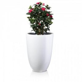 XXL Fiberglas Blumentopf Leno 75 Blumenkübel Pflanztopf Pflanzkübel, Maße: 55x55x75 cm (L/B/H), Farbe: weiß glänzend