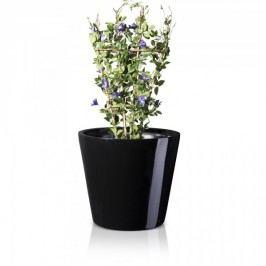 Großer Blumenkübel TERRA 61 Fiberglas Pflanzkübel Pflanztopf Blumentopf Maße: 71x71x61 cm (L/B/H), Farbe: schwarz glänzend