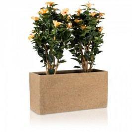 Fiberglas Pflanztrog Visio 40 Blumentrog Pflanzkübel Pflanzbehälter, Maße: 80x30x40 cm (L/B/H), Farbe: beige strukturiert