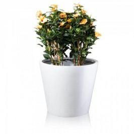 Großer Blumenkübel TERRA 61 Fiberglas Pflanzkübel Pflanztopf Blumentopf Maße: 71x71x61 cm (L/B/H), Farbe: weiß glänzend