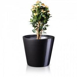 Großer Blumenkübel TERRA 61 Fiberglas Pflanzkübel Pflanztopf Blumentopf Maße: 71x71x61 cm (L/B/H), Farbe: grau metallic