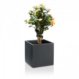 Anthrazit Pflanzkübel CUBO 50 aus Fiberglas Blumentopf in geriffelter Oberfläche