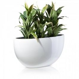 Pflanzschale BALCO 50 aus Fiberglas, oval, weiß glänzend