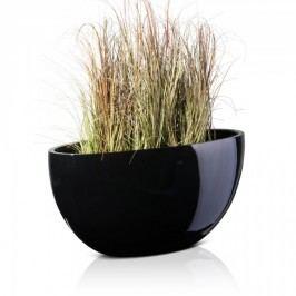 Ovale Pflanzschale BALCO 40 in schwarz glänzender Lackierung - Decoras Blumenschalen