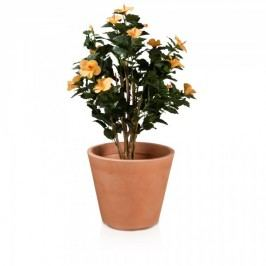 Pflanzkübel RIVA 43 Kunststoff Blumenkübel Pflanztopf Blumentopf Pflanzgefäß, Maße: 49x49x43 cm (L/B/H), Farbe: terracotta