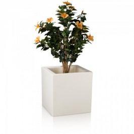 Blumenkübel CUBO 50 Kunststoff Pflanzkübel Pflanztopf Pflanzbehälter Blumentopf, Maße: 50x50x50 cm, Farbe: weiß