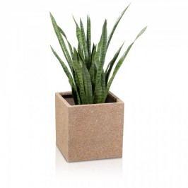 Beiger Blumentopf Pflanzkübel aus Fiberglas Cubo 40 von Decoras