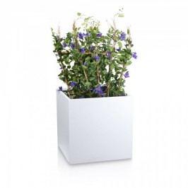 Großer Fiberglas Pflanzkübel CUBO 60 weiß matt - Maße: 60x60x60 cm - für Indoor- und Outdoor