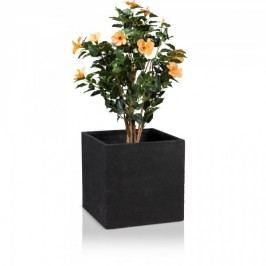 Blumentrog Fiberglas CUBO 50 schwarz strukturierte Oberfläche Pflanztrog von Decoras