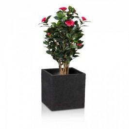 Pflanzkübel Fiberglas CUBO 40 schwarz strukturiert Blumentopf in natürlicher Oberfläche. Maße: 40x40x40 cm (L/B/H)