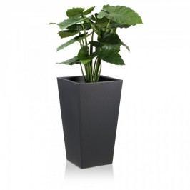 Pflanzkübel CONO PLAZA 68 Kunststoff Blumenkübel Pflanztopf Pflanzbehälter Maße: 40x40x68 cm (L/B/H), Farbe: anthrazit