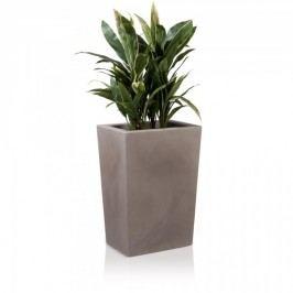 Pflanztrog LARGO M 70 Kunststoff Raumteiler Pflanzkübel Blumentröge, Maße: 50x36x70 cm (L/B/H), Farbe:  beige