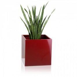 Fiberglas Pflanztopf rot hochglanz CUBO 50. Eckige Form, für Indoor & Outdoor. Abmessungen: 50x50x50 cm (L/B/H)