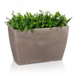Pflanztrog ARTESA 50 Raumteiler Blumentrog Pflanzkübel Pflanzbehälter, Maße: 80x40x50 cm (L/B/H), Farbe: beige matt